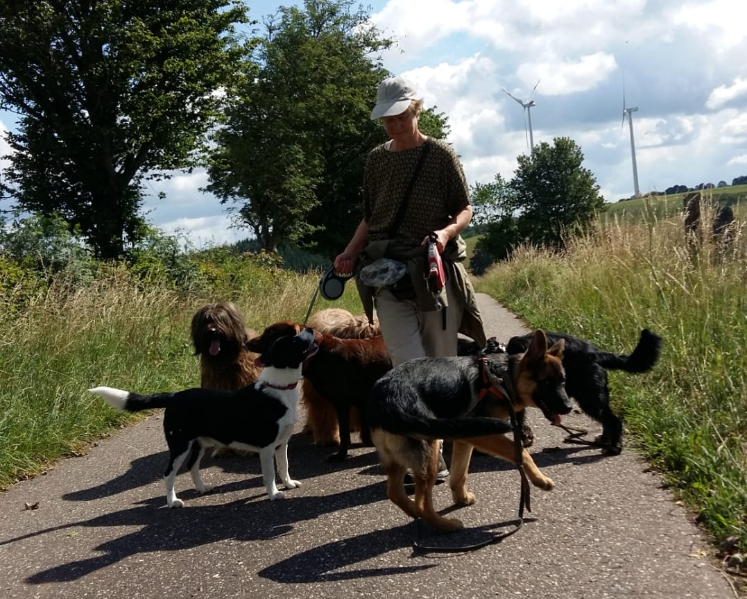 Bärbels Hundeschule